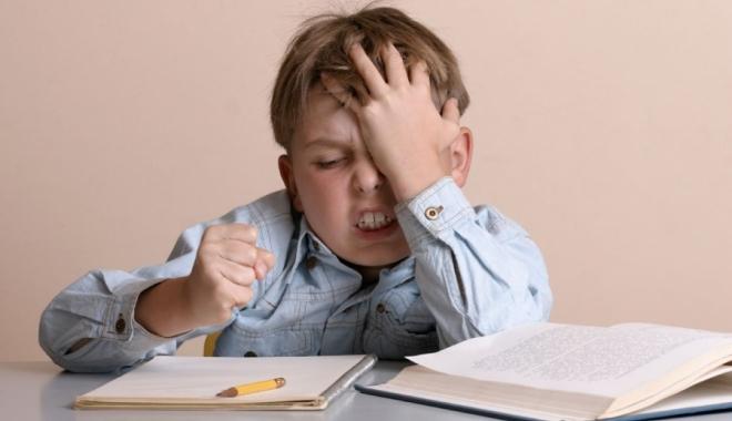 """Foto: """"Luni voi da un ordin în care să reglementăm câte ore trebuie să lucreze acasă un elev la teme"""""""
