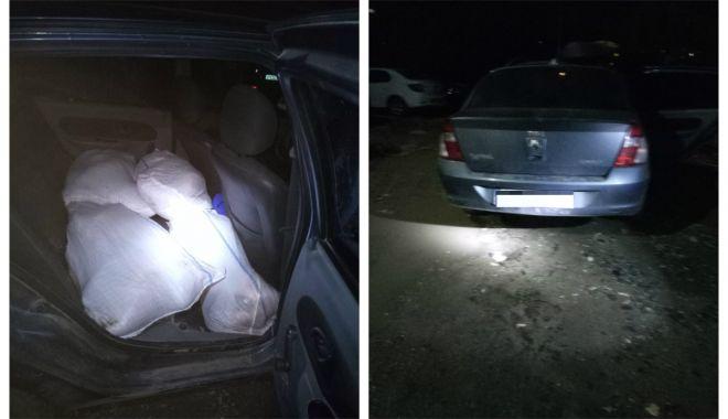 Foto: 200 kg peşte fără documente legale, confiscate de poliţiştii de frontieră constănțeni