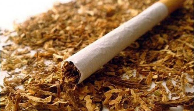 Foto: 11,13 tone de tutun confiscate de inspectorii antifraudă