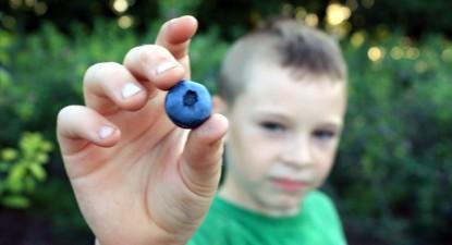 Foto: 7 superalimente ideale pentru sănătatea copiilor