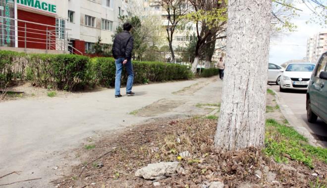Foto: Plimbare prin Constanţa sau slalom printre rahaţi