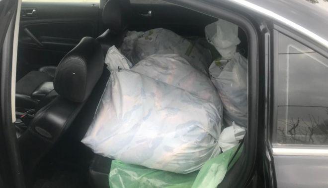 Foto: Peste 200 kg peşte, transportate fără documente legale, confiscate de poliţiştii constănţeni