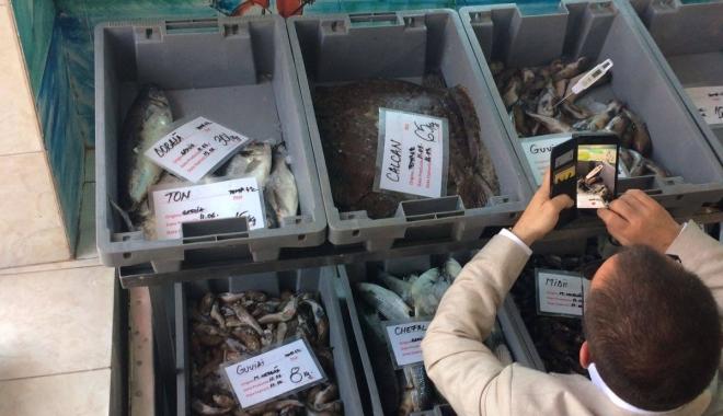 Foto: FOTO-VIDEO. Aţi cumpărat peşte din Piaţa Griviţei? E JALE CE A GĂSIT OPC-ul!