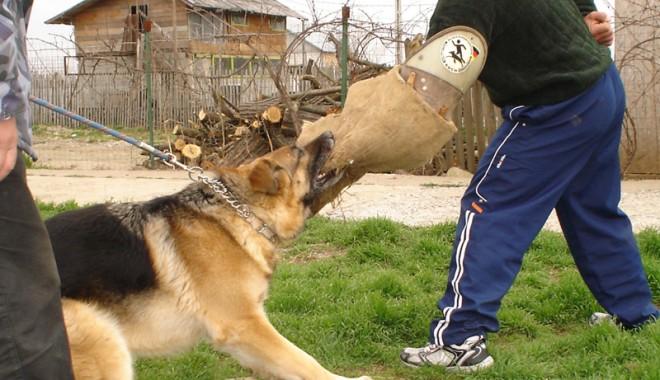 """Foto: """"Câinele meu n-are pic de maniere!"""""""