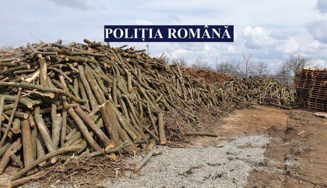 Acţiune a poliţiştilor pentru combaterea faptelor ilegale în domeniul forestier - 2-1618053886.jpg