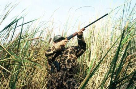 Foto: Descinderi la partidele de vânătoare din judeţul Constanţa