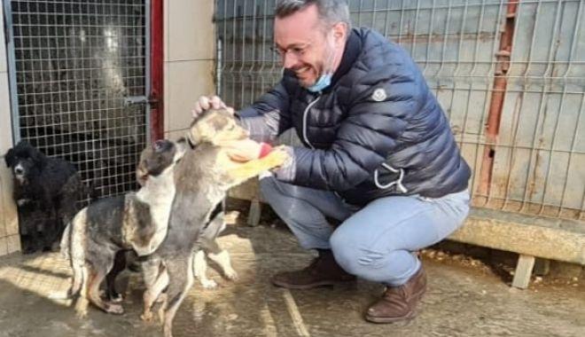 Adăpostul public pentru câinii fără stăpân a intrat în reparații capitale - 3-1606494231.jpg