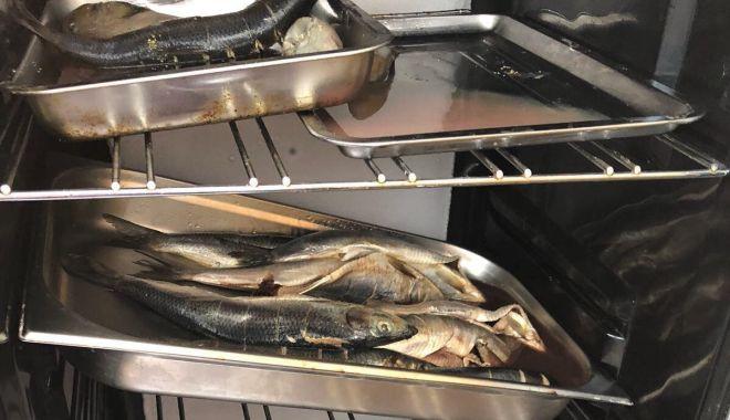VIDEO. Scandal la Eforie! Vând peşte prăjit la colţul drumului, deşi OPC le-a închis taraba!
