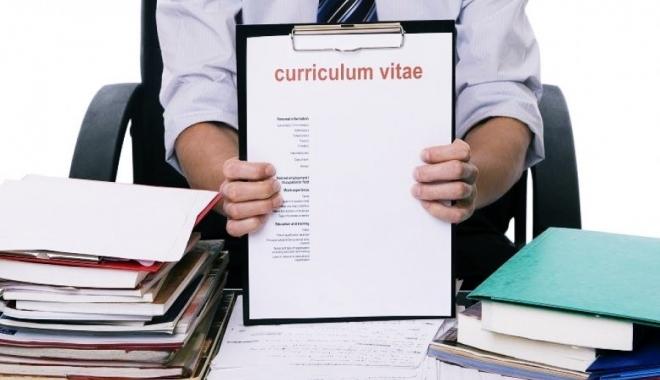 Foto: Oferte de muncă variate pentru şomeri. Iată ce se caută!