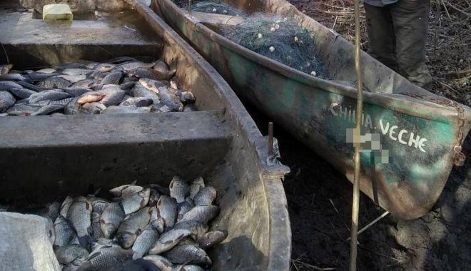 Foto: Peste 100 kg peşte fără documente legale şi plase de pescuit, confiscate de poliţiştii de frontieră