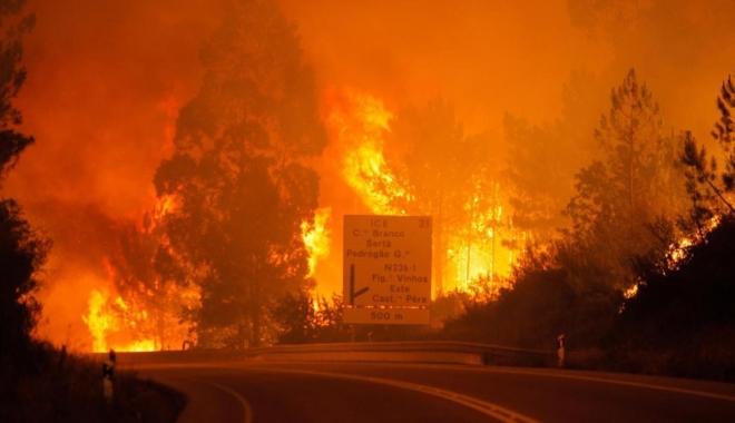 Foto: Tragedie în Portugalia / 57 de persoane au murit într-un incendiu de pădure din centrul ţării. Numărul victimelor este în creştere