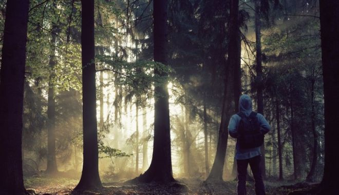 Foto: ALERTĂ! O femeie şi copilul ei de 3 ani, dispăruţi după o plimbare în pădure