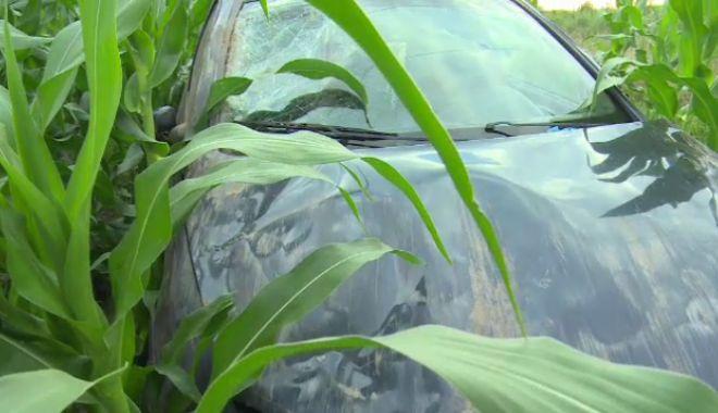 Foto: A plonjat cu maşina în lanul de porumb! Ce spune şoferiţa despre motivul accidentului
