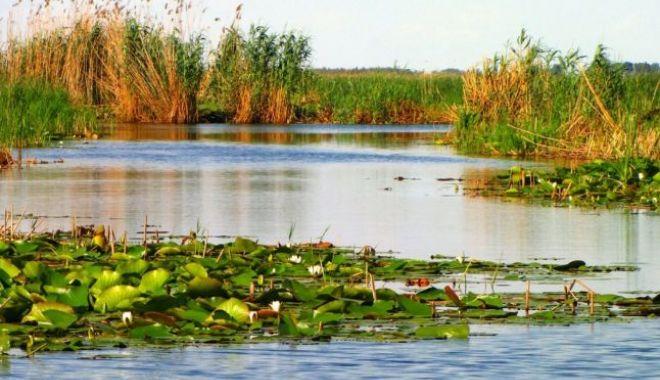 Foto: Americanii sunt fascinaţi de Delta Dunării