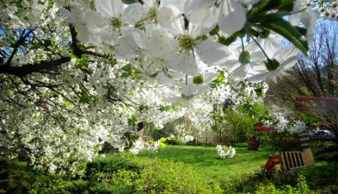 Foto: ANM. Cum va fi vremea în a doua zi de Paşte, la Constanţa