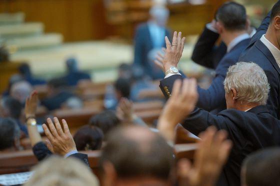 Foto: MOŢIUNE de cenzură împotriva Guvernului Dăncilă, a decis PNL