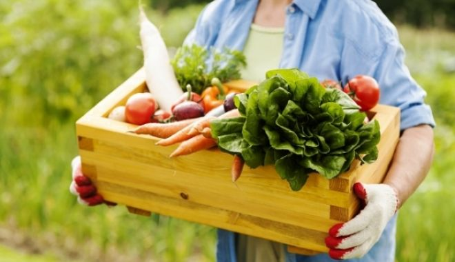 Foto: Viorica Dăncilă anunţă reducerea TVA de la 9% la 5%. Iată categoria de alimente