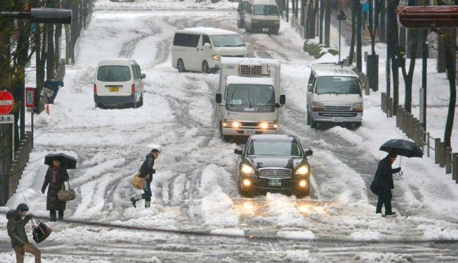 Foto: Furtună de zăpadă! Traficul aerian şi terestru, puternic perturbat