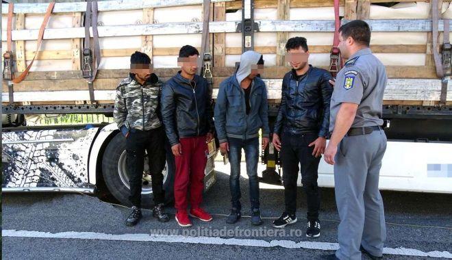 Foto: Patru cetăţeni afgani, ascunşi într-un camion, printre pepeni!