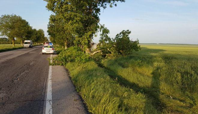 GALERIE FOTO / Accident rutier la intrare în Amzacea, judeţul Constanţa - accidenttiramzacea2-1526447442.jpg