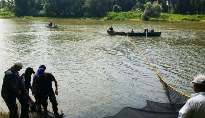 Foto: Acțiune de salvare a puietului de pește în județul Giurgiu