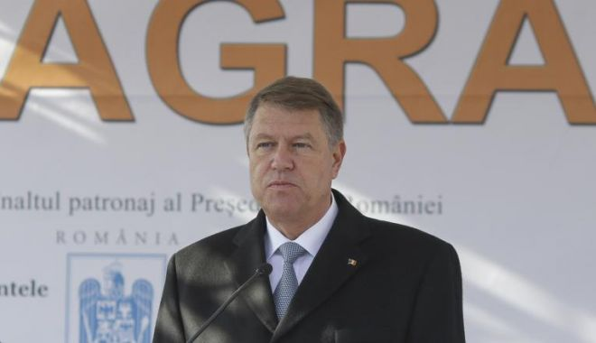 Foto: EPIDEMIE DE PESTĂ PORCINĂ / Iohannis, declarația zilei