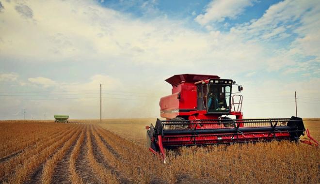 """Foto: Afaceri necurate în agricultură! Cum """"storceau"""" bani necuveniţi de la APIA"""