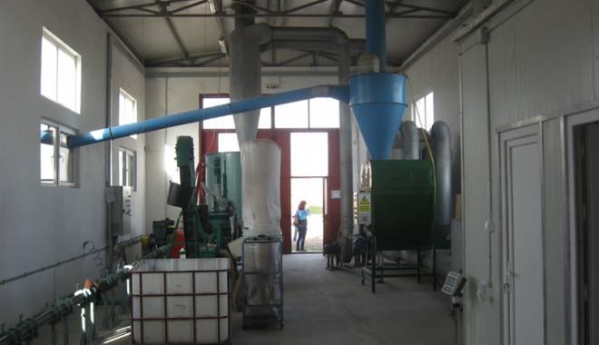 Foto: A fost inaugurată staţia de producere a peleţilor din paie Euro Vial Wood
