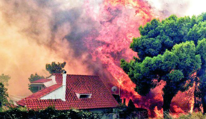 A fost stabilită cauza incendiilor din Grecia - afoststabilita-1532868205.jpg
