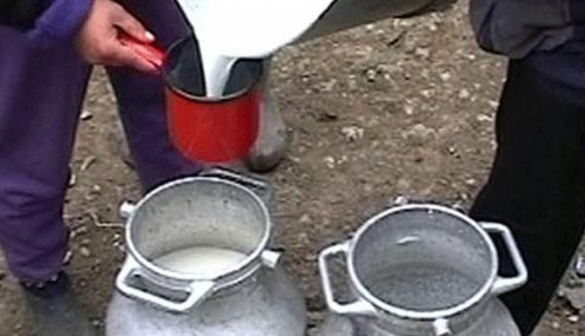 Foto: Agenţii economici din industria laptelui trebuie să depună declaraţiile anuale