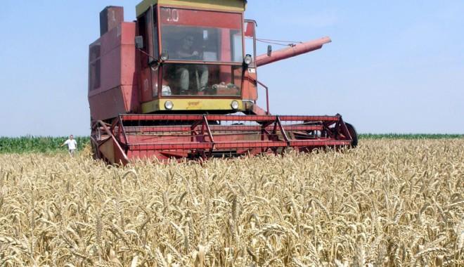 Foto: Agricultorii trebuie să-şi declare veniturile pe 2014