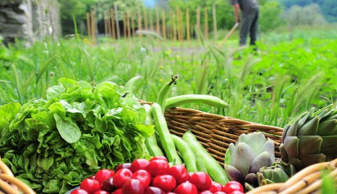 Foto: Veşti bune pentru fermieri. Vin banii - plăți compensatorii de dezvoltare rurală. Suma este uriaşă!