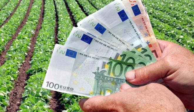 Foto: Ajutor de 119,422 milioane de euro pentru agricultorii din sectorul vegetal