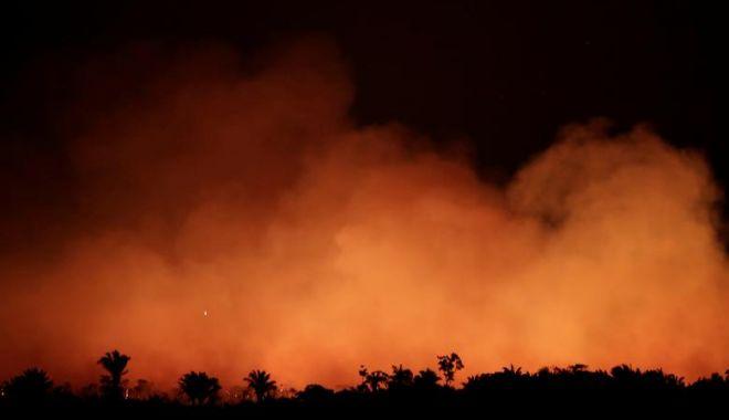 Incendiile din Amazonia / Brazilia acceptă în cele din urmă ajutorul extern - amazon-1566982927.jpg