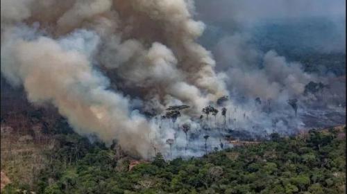 Brazilia refuză cei $20 de milioane oferiți de G7 pentru stingerea incendiilor din Amazon - amazonincendiu39416100-1566891539.jpg
