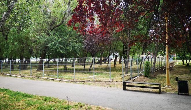 Foto: Ţarc pentru câini, în parcul Tăbăcărie