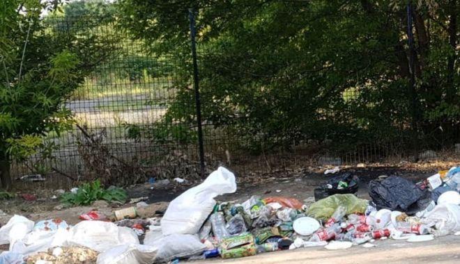 Foto: Amenzi usturătoare pentru constănţenii care aruncă gunoaiele în locuri neamenajate