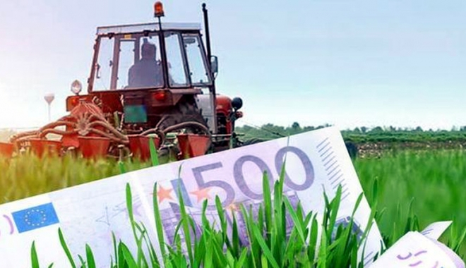 Foto: APIA a autorizat plata a 8.953 de cereri pentru fermierii constănţeni