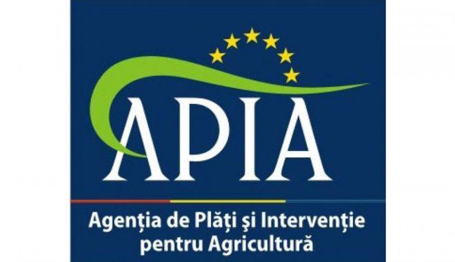 Foto: APIA eliberează adeverințe pentru fermierii beneficiari ai schemelor de plată