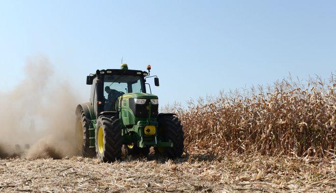 Foto: APIA primește cererile de solicitare a ajutorului pentru culturile din 2019 afectate de secetă
