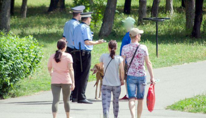 Foto: A plouat cu amenzi, la Constanţa! Poliţiştii locali nu au iertat pe nimeni