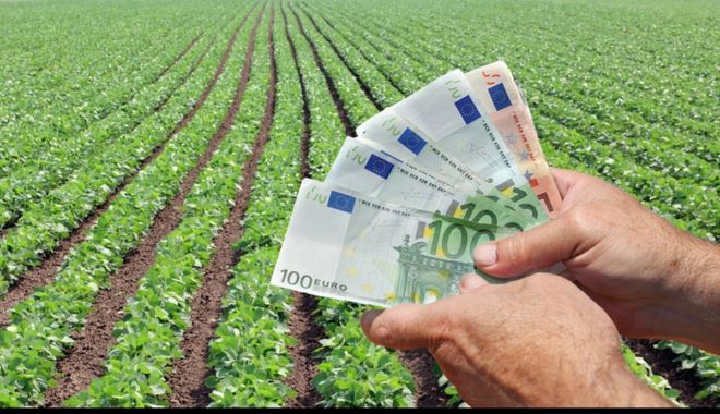 Foto: Astăzi, vin banii pentru proiectele  de investiții agricole