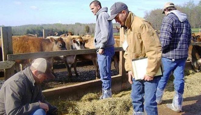 Foto: Atenţie fermieri, APIA vine în control!
