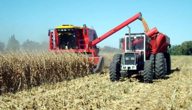 Foto: Aţi depus declaraţia privind veniturile din activităţi agricole?