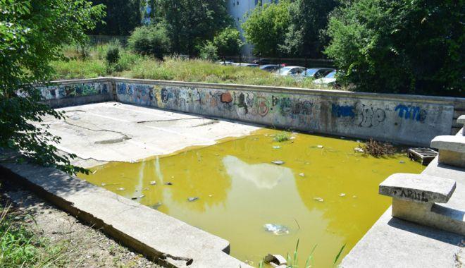 Broaşte şi mizerie în Tomis Nord! Bazinul de înot abandonat  de autorităţi