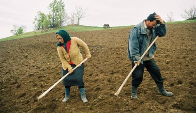Foto: Birocraţia pentru micii fermieri se reduce