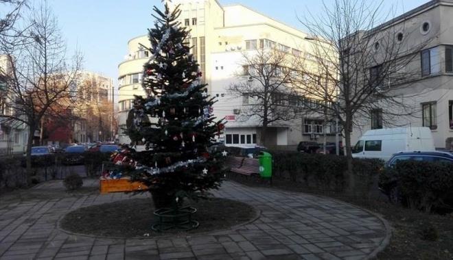 Foto: GALERIE FOTO / Un brad de Crăciun, împodobit cu fotografii ale victimelor din clubul Colectiv