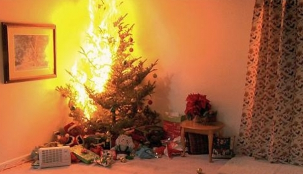Foto: Familie salvată de căţel, după ce bradul de Crăciun a luat foc în sufragerie