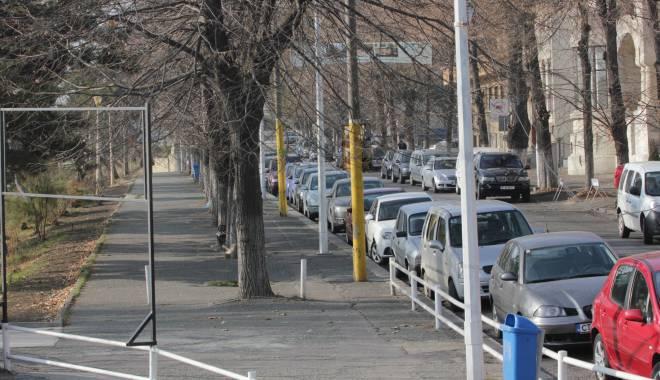Foto: Atenţie, constănţeni, se toaletează copacii şi spaţiile verzi din centrul oraşului
