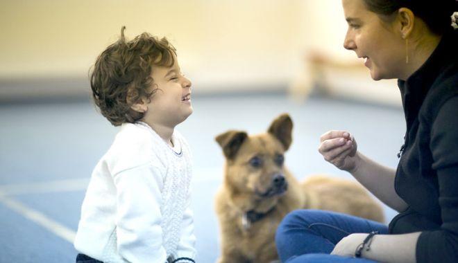 Foto: Câinii cu şi fără stăpân, sterilizaţi gratuit, la Agigea